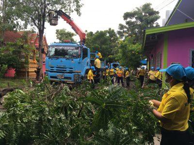 พัฒนาตัดแต่งกิ่งไม้ ต้นไม้ และปรับภูมิทัศน์ทำความสะอาด บริเวณโรงเรียนเทศบาลปลายบางวัดโคนอนราษฎร์บำรุง และวัดโคนอนมหาสวัสดิ์